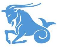 Capricorn Mortgage Investments | Garland, TX